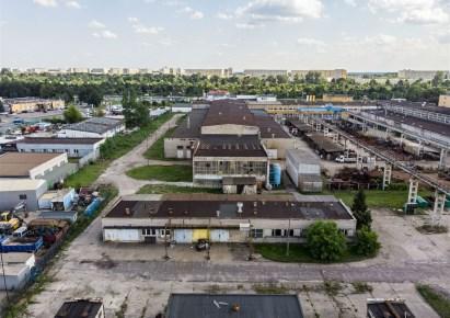 hala do wynajęcia - Toruń, Katarzynka